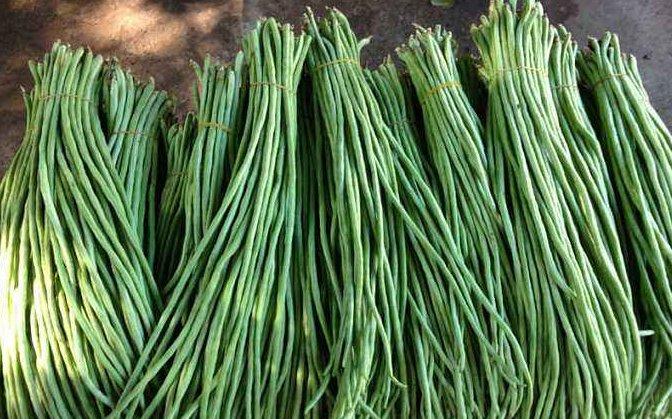 简单|刚学会,夏天保存豇豆如此简单!教你2招,脆嫩又翠绿,放1年不坏
