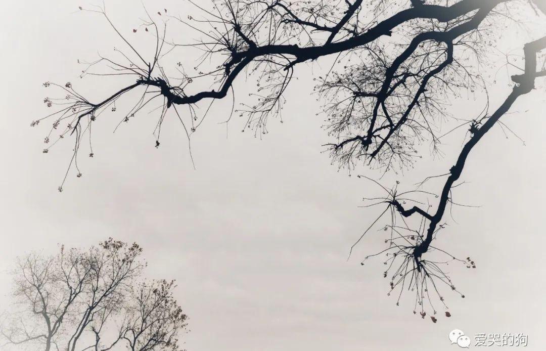 首诗|范仲淹悲天悯人的情怀,在这首诗中体现得淋漓尽致,同情底层穷人